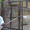 """Γερμανία: Σενάριο φρίκης σε ζωολογικό κήπο – """"Κάποια ζώα ίσως γίνουν τροφή για άλλα"""""""